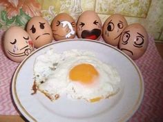 Sad eggs - Funny Pictures