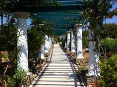 Kallithea Spa - walkway to the wedding venue Walkway, Greece, Wedding Venues, Destinations, Sidewalk, Spaces, Travel, Rhodes, Wedding Reception Venues