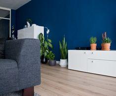 Full-indigo-home-label1114-2