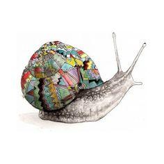 snail shell inspired by an artist Art And Illustration, Illustrations, Snail Art, Snail Shell, Ecole Art, High School Art, Arts Ed, Fauna, Art Lessons