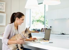 Woman using laptop with dog on lap