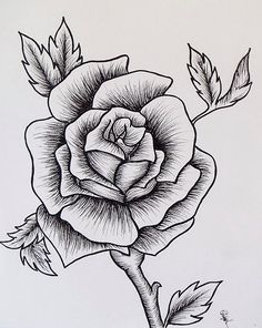 rose drawing drawings easy hand detailed draw sketch drawn templates tattoo sketches simple tattoos premium lines template roses paintingvalley line