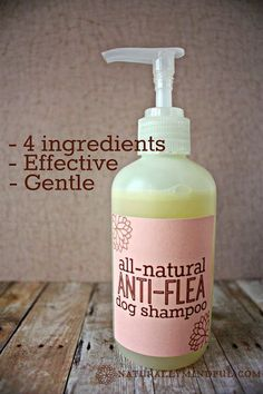 All-natural anti-flea dog shampoo 1/2 cup water (preferably distilled) 1/3 cup pure castille soap (I used this one) 1 tsp olive oil (find it here) 20 drops of pure essential oil. I used 10 rosemary and 10 peppermint