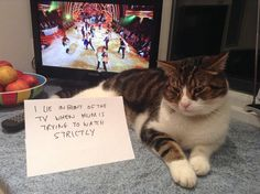 """""""I lie in front of the TV when mum is trying to watch Strictly!"""""""