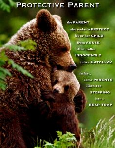 The Protective Parent Bear Trap, Family Court, Brown Bear, Narcissist, Sick, Parenting, Bullet Journal, Books, Animals