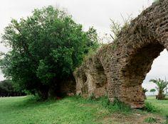 Roma - Parco di Tor Tre Teste - Acquedotto Alessandrino 1