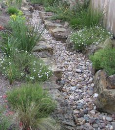 Backyard water feature dry creek bed 55 New Ideas<br> Landscaping On A Hill, Landscaping With Rocks, Landscaping Ideas, Mulch Landscaping, Rain Garden, Dream Garden, Stream Bed, Dry Creek Bed, Dry River