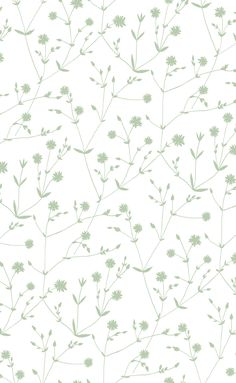 Illalla Wallpaper Cream/Mint Green