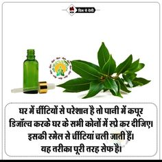 #Dilsedeshi #health Good Health Tips, Natural Health Tips, Health And Fitness Tips, Health And Beauty Tips, Ayurvedic Remedies, Gernal Knowledge, General Knowledge Facts, Home Health Remedies