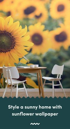 Invite a positive feel to your home with a sunflower wallpaper, a radiant flower thats instantly recognisable for its vibrant yellow petals. Sunflower Design, Sunflower Pattern, Yellow Sunflower, Mobile Wallpaper, Wallpaper Murals, Sunflower Wallpaper, Vintage Designs, Floral Designs, Floral Wall