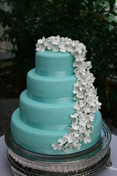 I would prefer this with the cake being white and the flowers being tiffany blue for our wedding. Very pretty cake Fancy Cakes, Cute Cakes, Pretty Cakes, Beautiful Cakes, Tiffany Wedding, Blue Wedding, Dream Wedding, Wedding Colors, Rustic Wedding