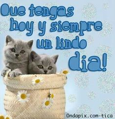 Buenos Dias  http://enviarpostales.net/imagenes/buenos-dias-1590/ #buenos #dias #saludos #mensajes