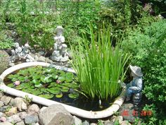 Bathtub turned into a planter want to do this with our for Bathtub fish pond