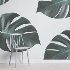 Invite a fresh botanical wallpaper into your room with the Monstera Wallpaper Mural, a cool photographic, tropical leaf design that is modern and unique in style. Palm Leaf Wallpaper, Tropical Wallpaper, Botanical Wallpaper, Green Wallpaper, Flower Wallpaper, Wallpaper Murals, Wallpaper Designs, Wall Murials, Massage Room Design