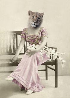 Elsa Vintage Cat 5x7 Print Altered Photograph by AnimalFancy Bizarre Animals, Animal Dress Up, Fancy Cats, Weird Pictures, Jolie Photo, Animal Heads, Animal Fashion, Vintage Cat, Wildlife Art