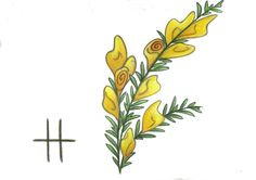 Ogham Gorse by Spiralpathdesigns