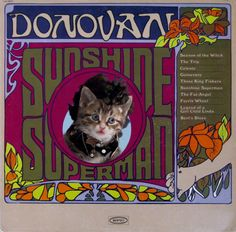 Sunshine Supercat