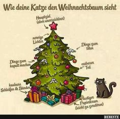 funny picture & and christmas tree.jpg& by Fabi. One of 821 files in the . - funny picture & and christmas tree.jpg& by Fabi. One of 821 files in the & - Christmas Tree Quotes, Cat Christmas Tree, Christmas Thoughts, Xmas Trees, Merry Christmas, I Love Cats, Cute Cats, Funny Cats, Crazy Cat Lady