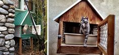 Happy Cat Cottage Outdoor Litter Box for inside cats. Uses a pet door from inside; clean outside.