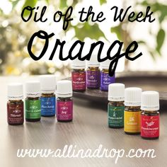 Oil of the Week on All in a Drop is the fresh and clean smelling Orange. Use for whitening teeth, degreasing the oven and to help you wake up! #livingwithessentialoils #oiloftheweek #allinadrop
