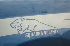 Polizia di Stato Volanti stemma su auto