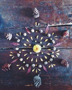 nature mandala. winsomehollow https://www.facebook.com/pages/Healthy-Vibrant-You/381747648567846