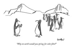 """""""Why on earth would you spring for color film?"""" - New Yorker Cartoon Premium Giclee Print by Robert Leighton at Art.com"""