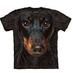 Size: SmallTake the dog you love every where with their face on your Human T-Shirt by The Mountain! Big Face Animal Tee. Shirt for adult humans. Dachshund on sh