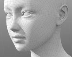 chara0_1 Zbrush Character, 3d Model Character, Character Modeling, 3d Face Model, Face Topology, Maya Modeling, Polygon Modeling, Head Anatomy, 3d Human