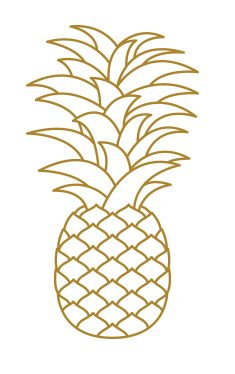 Pineapple – Parnell Auckland Auckland, Pineapple, Fruit, Image, Logo, Ideas, Logos, Pine Apple, Thoughts