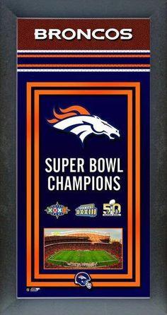 Denver Broncos 2013 AFC Champs House Banner Flag