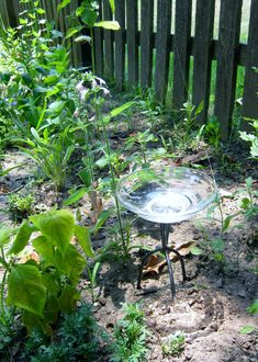 Butterflies are attracted to salt. For male butterflies especially, it is a vital nutrient. I decided to help them out and make a butterfly salt lick for my garden. I washed out a glass bowl, found an old discarded metal stand andglued them together.