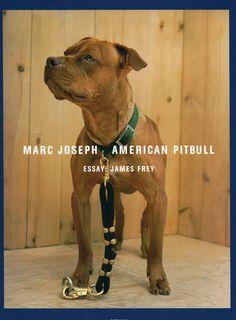 AMERICAN PITBULL: MARC JOSEPH- 1st Edition PHOTOGRAPHY BOOK – NOMADCHIC $80