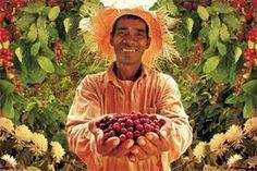 fair trade farmers - Google Search