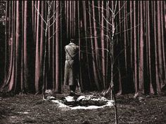 Twin Peaks- cooper entering the black lodge
