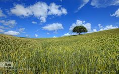 Green and Blue by FilipeCorreia #landscape #travel