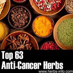 Anti-Cancer Herbs