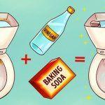 Aceto Versalo nella Vasca dei Servizi Igienici, e Guarda cosa Succede