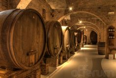 Visita para 2 a las bodegas Alella vinícola con cata de 3 de sus vinos Alella Marfil, el Día del Padre más enológico