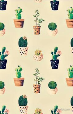 Cactus Backgrounds, Cute Wallpaper Backgrounds, Pastel Wallpaper, Wallpaper Iphone Cute, Pretty Wallpapers, Aesthetic Iphone Wallpaper, Disney Wallpaper, Flower Wallpaper, Cool Wallpaper