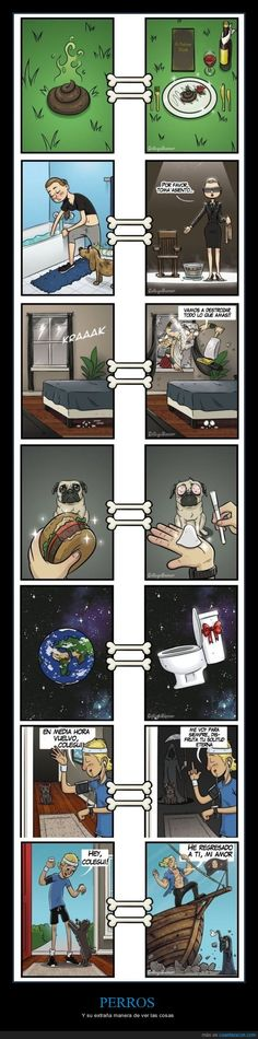 Funny pictures about What Things Looks Like to Dogs. Oh, and cool pics about What Things Looks Like to Dogs. Also, What Things Looks Like to Dogs photos. Memes Humor, Funny Memes, Funniest Memes, Funny Cute, The Funny, Hilarious, Animal Memes, Funny Animals, Rage Comic