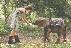 Les éléphanteaux ont aussi le droit.