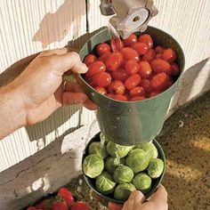10 Uses for Plastic Plant Pots: Clean Fruits and Veggies Place stuff you pick from the garden in clean pots and rinse off dirt with water from your outdoor tap. Let the water drain out the bottom holes before storing your bounty. Plastic Plant Pots, Plastic Flower Pots, Fresh Vegetables, Fruits And Veggies, Clean Pots, Outdoor Landscaping, Garden Crafts, Potted Plants, Fresh Fruit