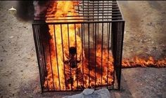 PHOTO: ABNA  Moderate terrorists burn entire family alive for trying to escape. Obama's Moderate Terrorists.