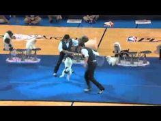 Dog Tricks - Halftime Show Dog in OKC by ATHonESPN #Oklahoma_City_Thunder