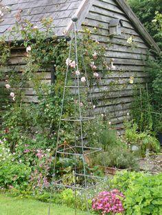 rusted steel metal 1 5m pea bean lattice pyramid garden plant