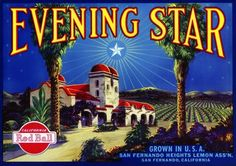 Society of the Evening Star was the biggest conflict that the Knights of Dawn had in this book