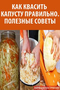 Tasty, Yummy Food, Fermented Foods, Canning Recipes, Preserves, Pickles, Cabbage, Food And Drink, Vegetables
