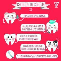 #Unitips recomendado para todos! Cuiden sus cepillos dentales #UnidentGye ✔  #teethbrushing #cepillodental #dentista #odontologo #cuidado #salud #caries