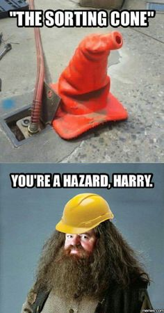 You're a Hazard Harry